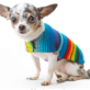 Serape Blanket Dog Poncho