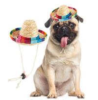 Pet Sombrero Hat
