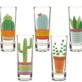 Tequila Fiesta Shot Glasses